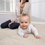 Lexington Home Carpet Cleaning