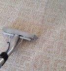 Lexingtons Best Carpet Cleaning