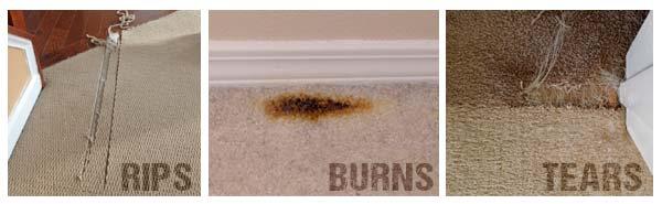 Lexington Ky Carpet Damage Repair