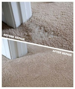 Carpet Repair in Lexington KY
