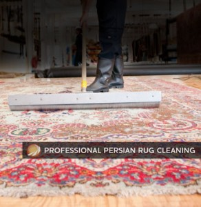 Persian Rug Cleaners